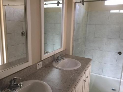 Master Bath Walk-In Tile Shower